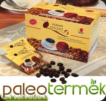paleo_kave